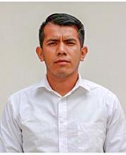 Luis Fernando Castañeda Pacheco